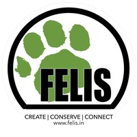 Felis Creations India Contact Information